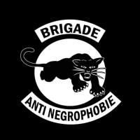 brigade anti nogrophe